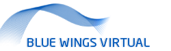 Bluewings Logo