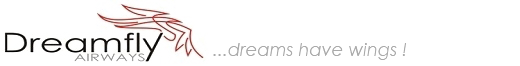 DreamFly Logo